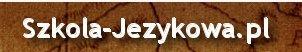 Kurs językowy angielski, szkolenia językowe dla firm online, Tłumacz niemieckiego , szkoła jezyków obcych Kraków e-learing, tłumaczenia niemiecki Kazania i homilie