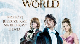 Magia Świąt Wizarding World